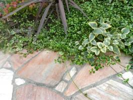 福岡県筑紫郡那珂川町 M様邸 ガーデン ガーデニング 洋風ガーデン外構工事 デザイン