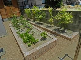 福岡県糸島市W様邸ガーデン工事のデザイン例。化粧ブロックの畑。家庭菜園も楽しめます。