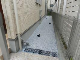 福岡県春日市の外構リフォーム工事。お庭・フェンス・門まわりのエクステリアリフォーム。