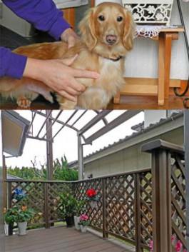 福岡県太宰府市のウッドデッキとテラス屋根を庭・ガーデンに施工されたお客様の感想。