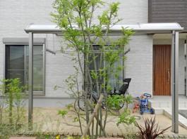 お庭にテラス屋根があると便利ですね。勝手口の前に付ける方もいらっしゃいます。